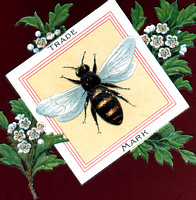 HRS 4661 Radcliffe, Hoyle's shirtings Bee Trade Mark