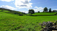 HRS 10409 Keld, sheep pasture L1190420