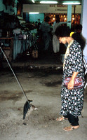 HRS 933 India, Calcutta, punishing a bird 1995